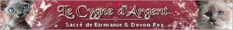 Chatterie Le Cygne d'Argent
